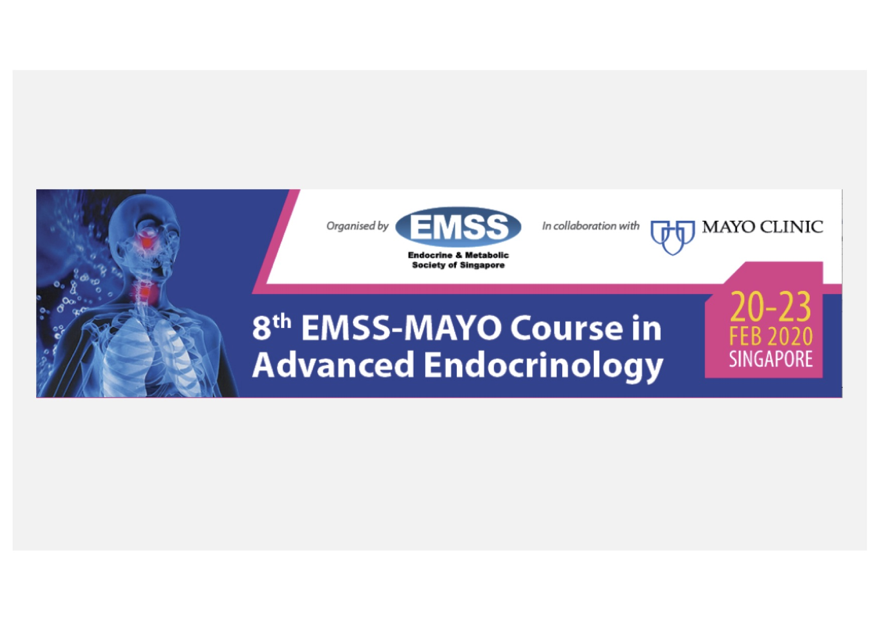 Endocrine and Metabolic Society of Singapore (EMSS